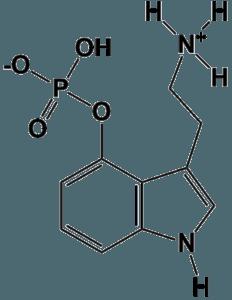 Molecular structure of Norbaeocystin