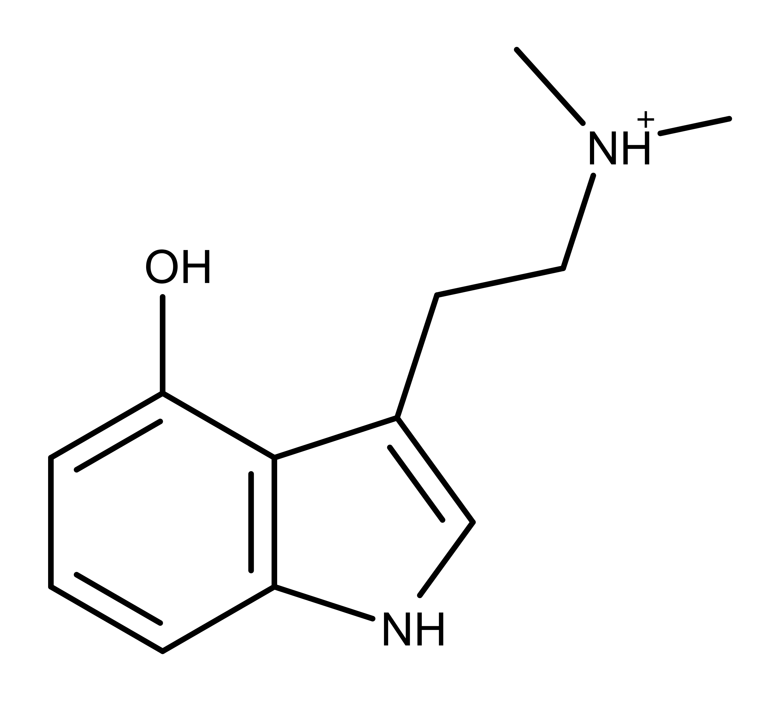 A Newly Discovered Psilocybin Derivative